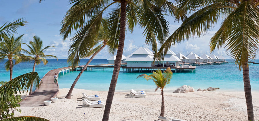 Diamonds Thudufushi Palmen Strand