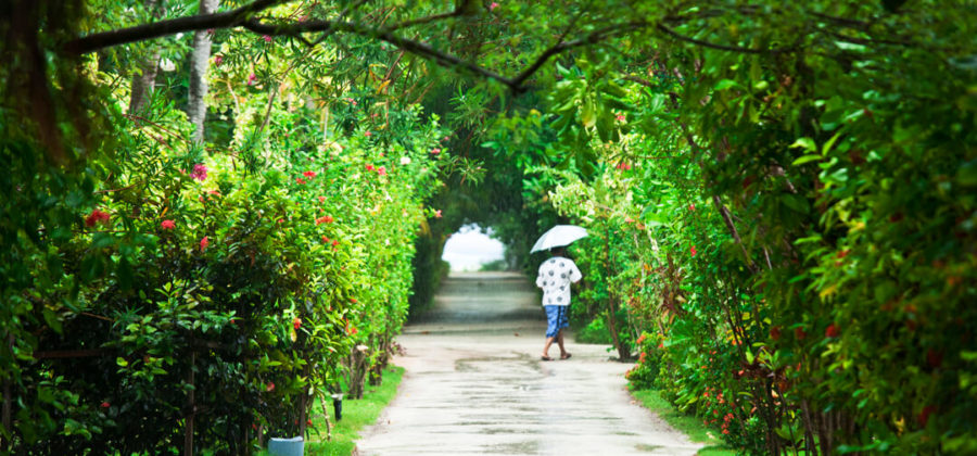 Adaaran Select Hudhuran Fushi Flora