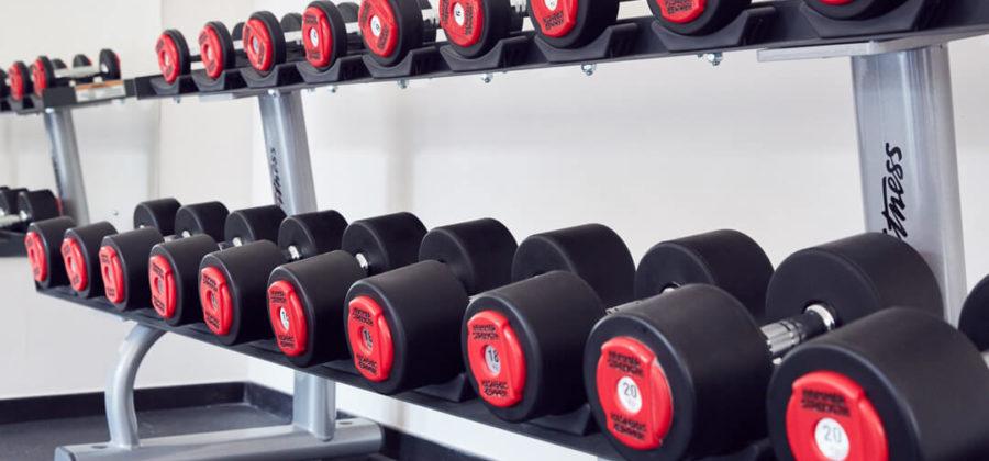 Amari Havodda Fitness Gewichte