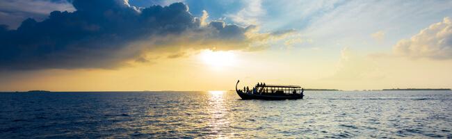Sheraton Maldives Sunset Dolphin Cruise