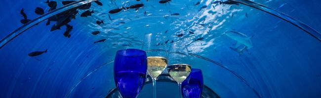 Hurawalhi Unterwasser Restaurant Ausblick Oben